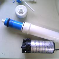 membrane02.jpg